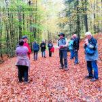Große Wanderung - Geisweid-Langenbachtal - 16.10.2019 - Bild 01