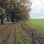 Große Wanderung - Geisweid-Langenbachtal - 16.10.2019 - Bild 07