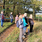 Große Wanderung - Geisweid-Langenbachtal - 16.10.2019 - Bild 12