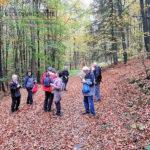 Große Wanderung - Geisweid-Langenbachtal - 16.10.2019 - Bild 16